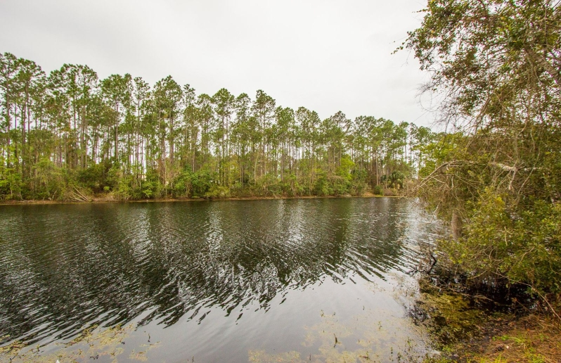 Fresh Water Canal Palm Coast, Florida